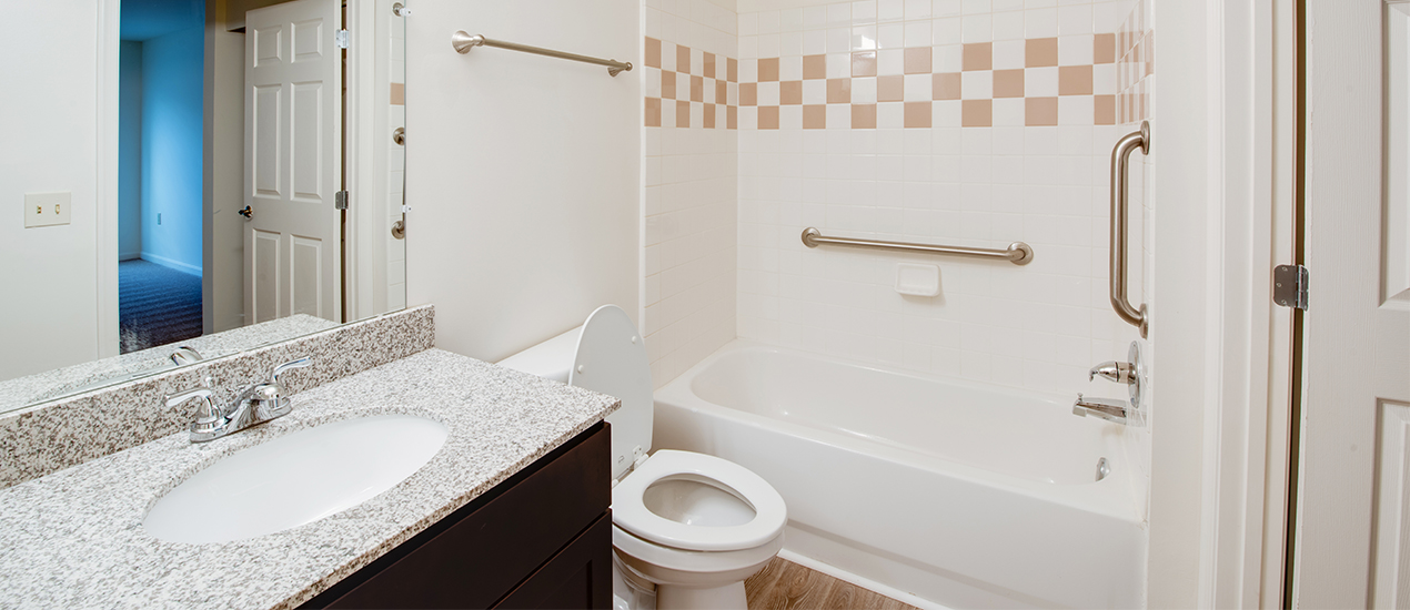 Bathroom with handicap accessible features