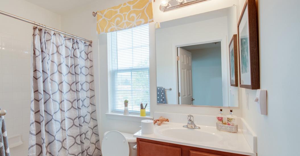 Overlook at Avalon Bathroom