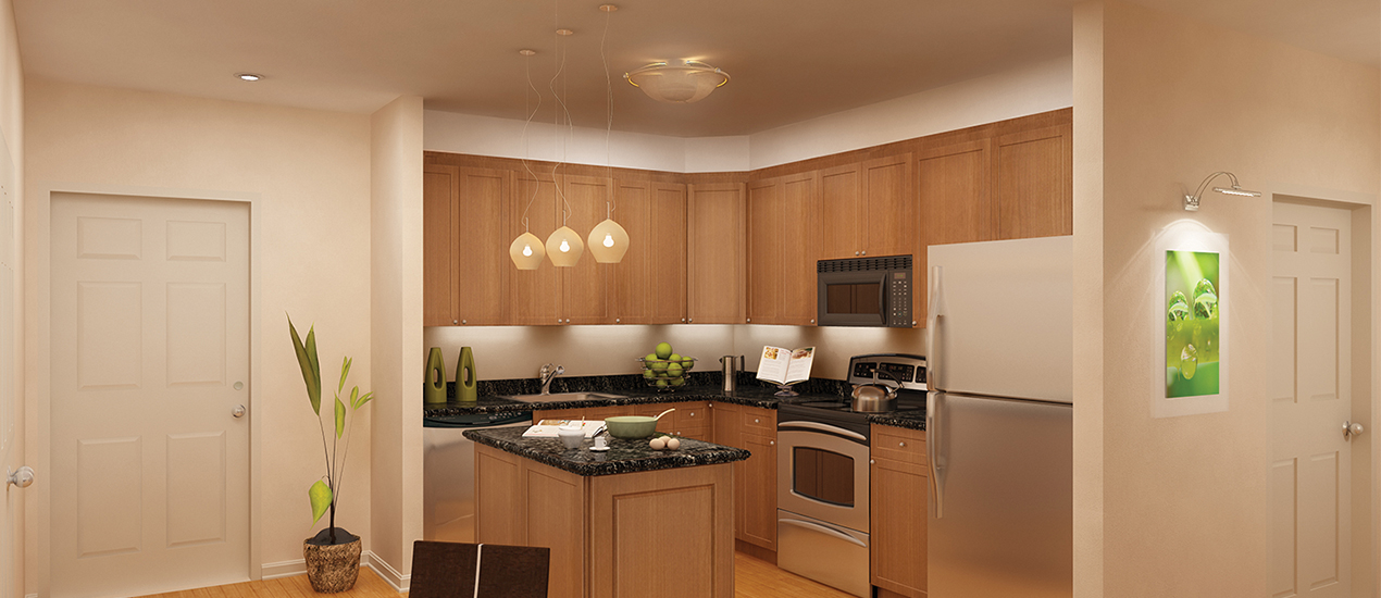 Argent Apartments Silver Spring MD Kitchen